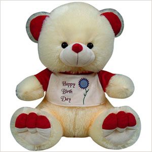 Soft Teddy Bears from Funny Pets